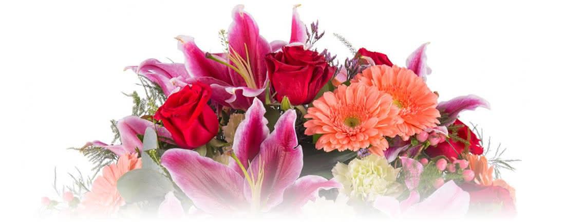 Ofereça lírios e expresse o amor mais puro no São Valentim