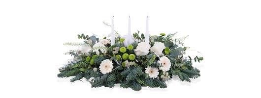 Plantas de Natal no seu estilo de decoração