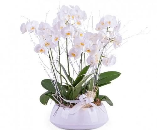 Ramos de flores con mensaje para agradecer a las mujeres