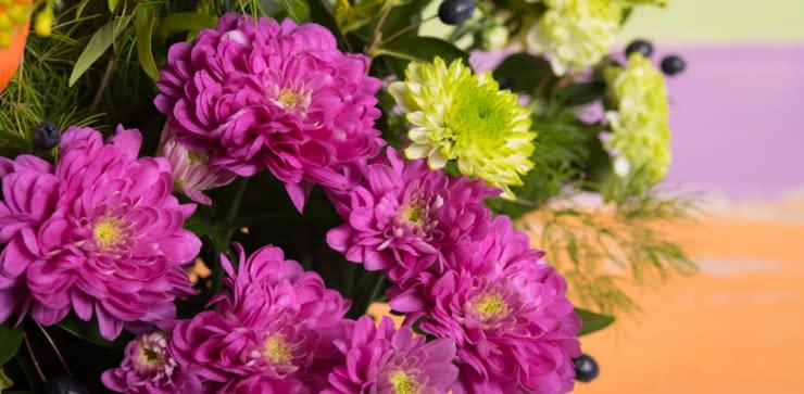 Enviar arranjo de gerberas e liliums ao domicílio