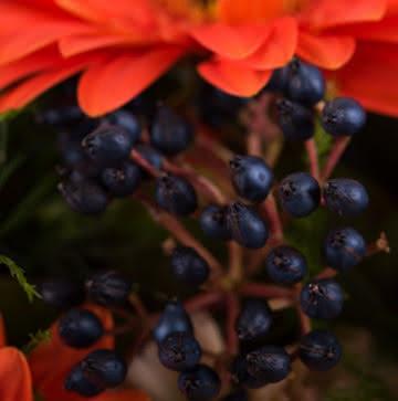 Enviar arranjo de rosas laranjas