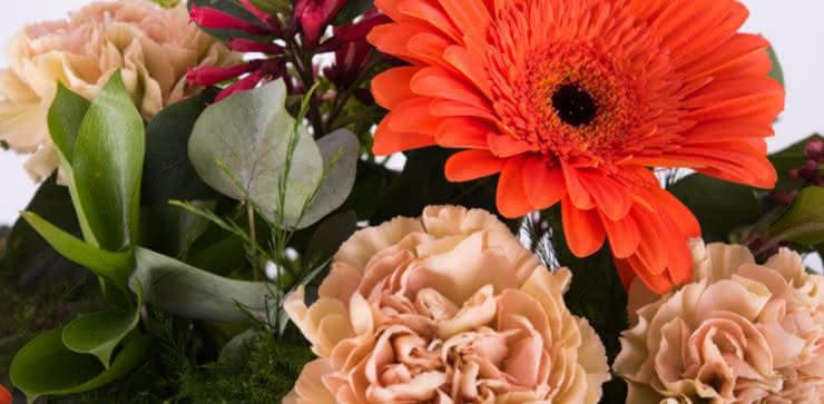 Enviar arranjo de rosas e gerberas ao domicílio