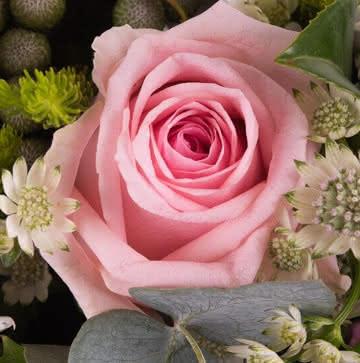 Arranjo rosas cor-de-rosa