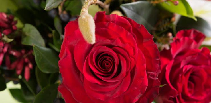 Enviar arranjo de rosas e liliums ao domicílio