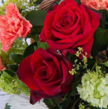 Cesta com rosas e cravos