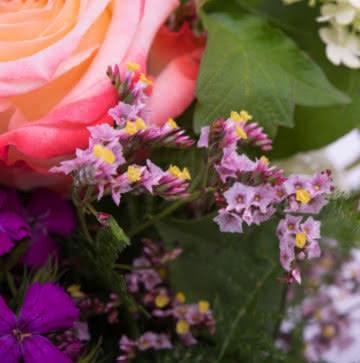 Enviar arranjo de verão com rosas