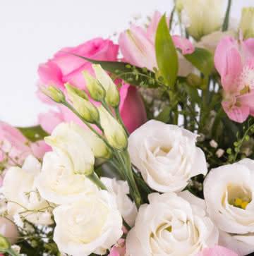 Enviar flores variadas