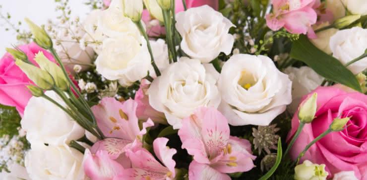Enviar flores ao domicílio