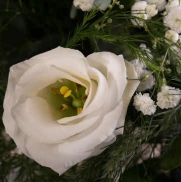 Enviar arranjo com rosas amarelas